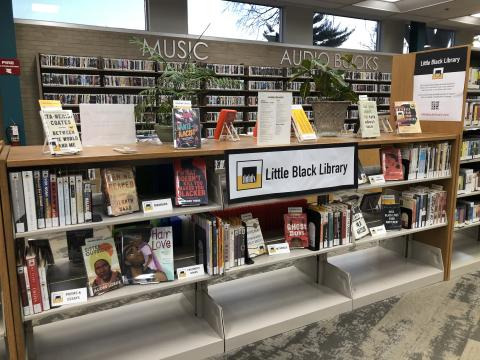 """Image of """"Little Black Library"""" Display in at the Lansing Public Library (IL)"""
